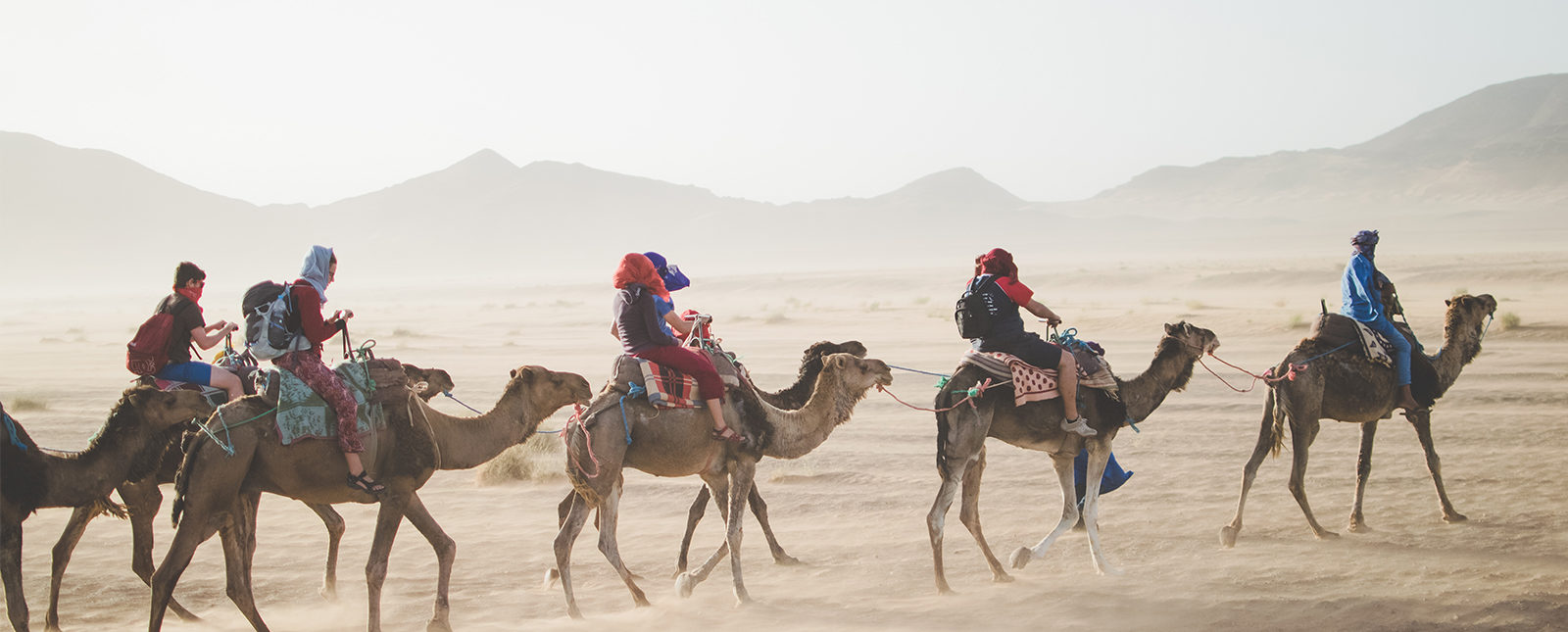 Three camels carrying people through the desert